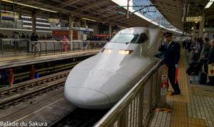 article7_bds--Japon--trajet_notogawa-3