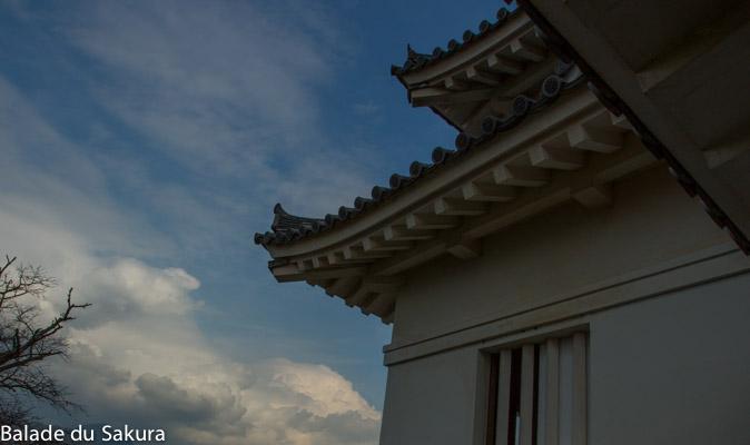 article21_bds--Japon--uwajima-jour2-4