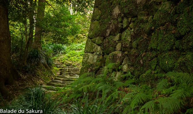 article21_bds--Japon--uwajima-jour2