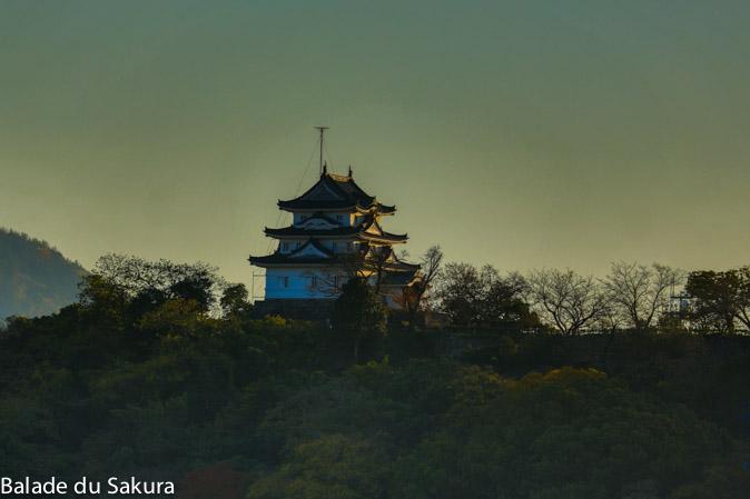 article22_bds--Japon--uwajima-jour3-7