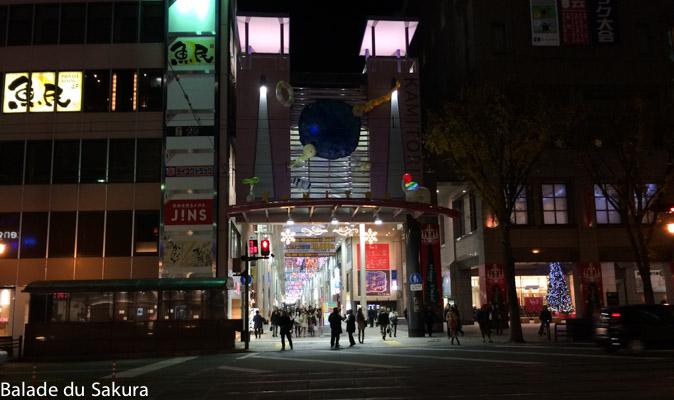 article23_bds--Japon--kumamoto-7
