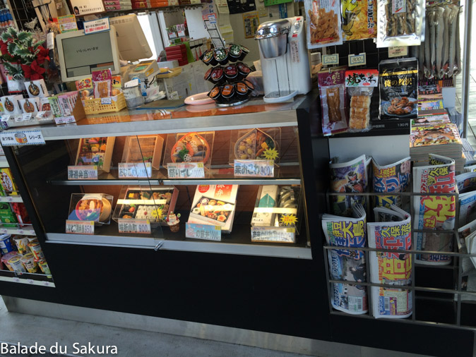 article23_bds--Japon--trajet-kumamoto-3