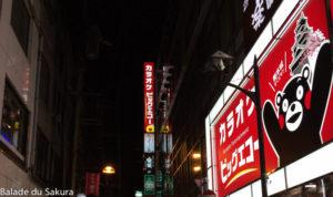 article23_bds--Japon--trajet-kumamoto-7