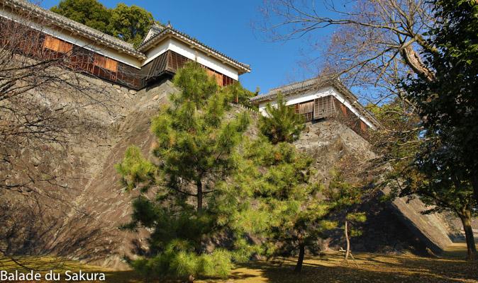 article_fin_bds--Japon--kumamoto