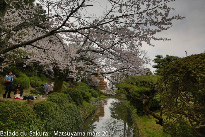 sakura_matsuyama31032014-7V0B1834