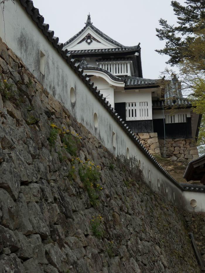 Sakura_article_bitchumatsuyama_16042014_P1030433