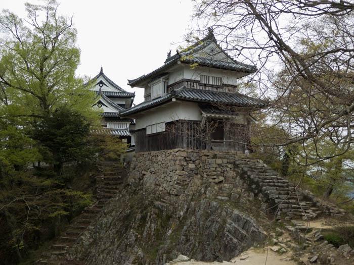Sakura_article_bitchumatsuyama_16042014_P1030454