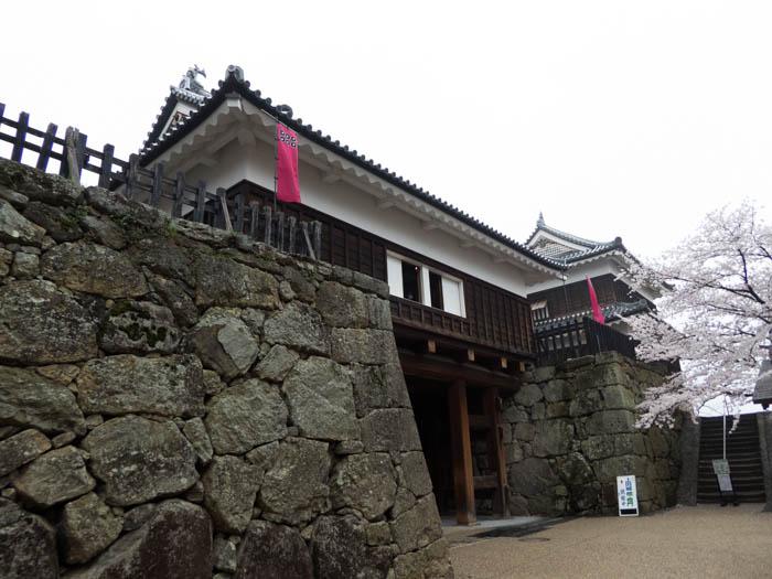 Sakura_article_ueda_18042014_P1030684