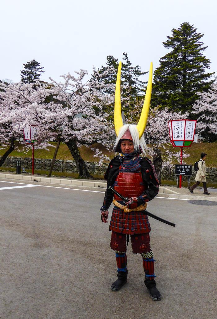 sakura_hikone3_13042014-P1030056
