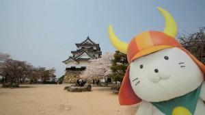 sakura_hikone_chateau_7V0B7876_10042014
