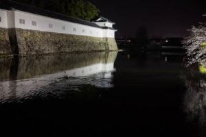 sakura_hikone_jour1_7V0B7674_09042014