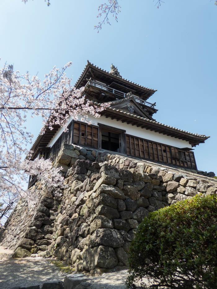 sakura_maruoka_chateau_P1020691_11042014