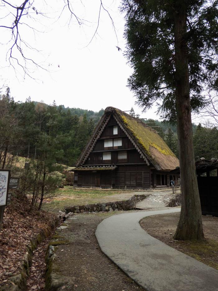 Sakura_article_takayama2_22042014_P1040218
