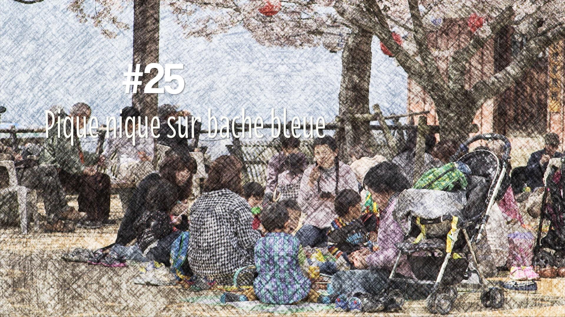 L'hanami et le traditionnel pique nique sur bâche bleue (#25)