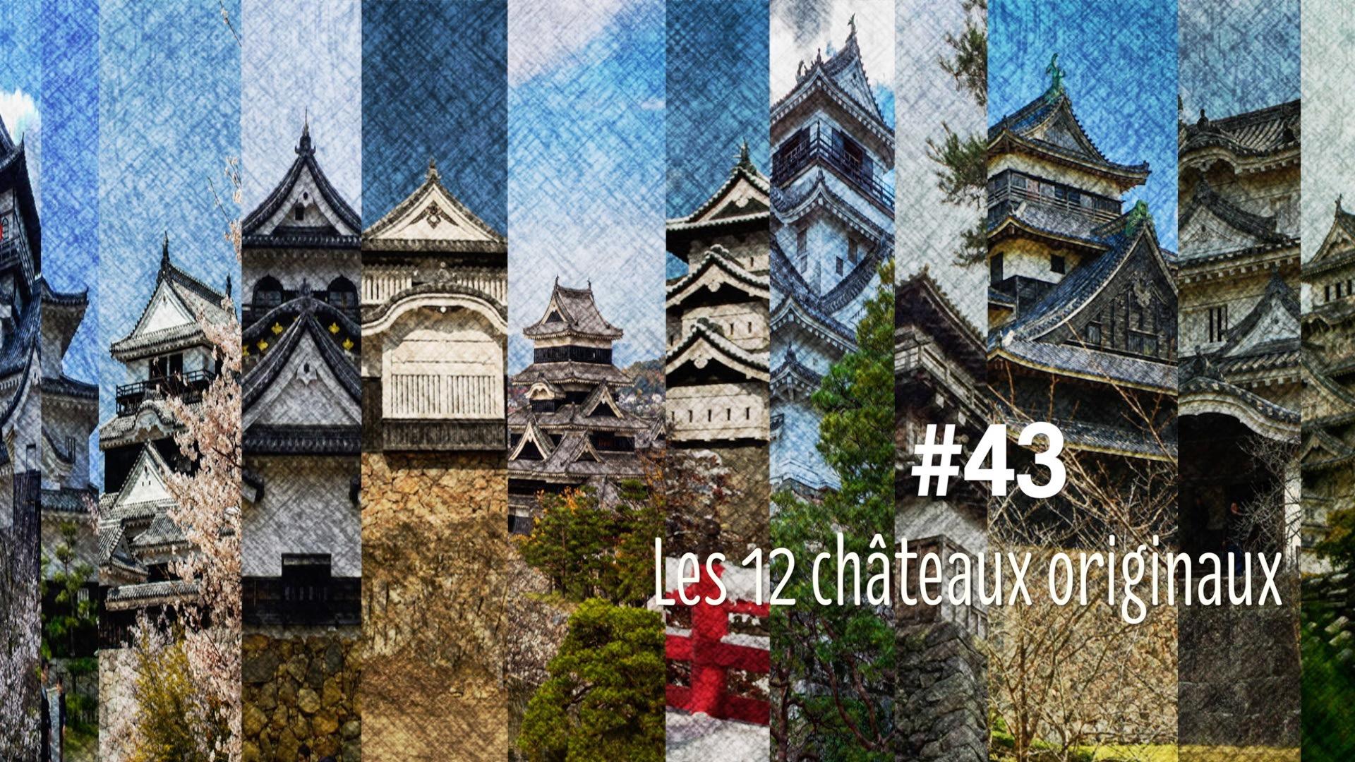 Les 12 châteaux originaux au Japon (#43)