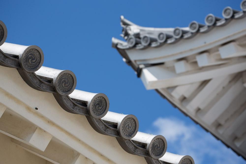 SEL_A_Kakegawa__article_kakegawa_7V0B2976