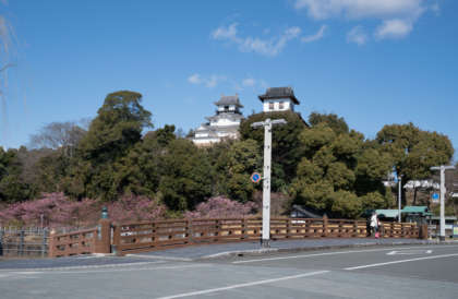 SEL_A_Kakegawa__article_kakegawa__DSC6530
