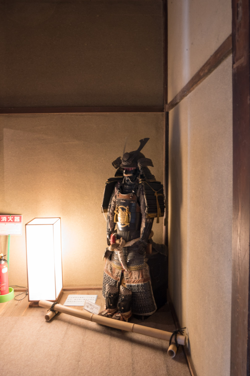SEL_A_Kakegawa__article_kakegawa__DSC6644