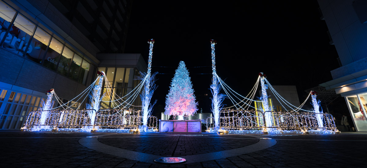 Les illuminations de Noël au Japon