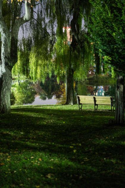 bds, nakajima park, sapporoDSC02559