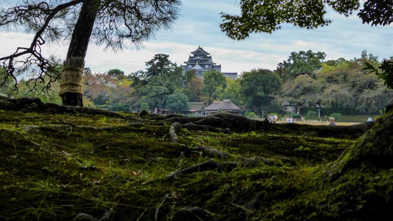 SEL_SEL_A_OKAYAMA_Chateau, japaninamug, korakoen, selection_articleP1060916