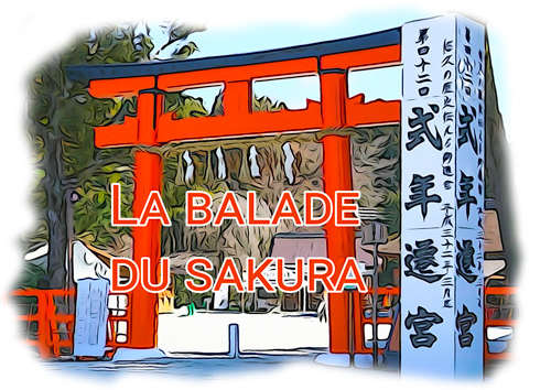 Blog Voyage Découverte Japon – balade du Sakura